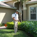 Pest Control Tips for College Students